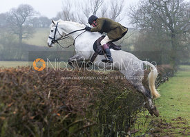 The field jump a hedge near Owston Wood
