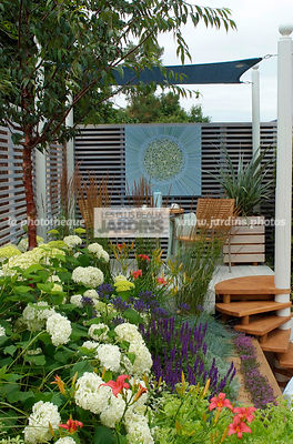 Border, Border with flowers, garden designer, Small garden, Stair, Terrace, Trellis, Urban garden, Contemporary Terrace, Digital, Grasses
