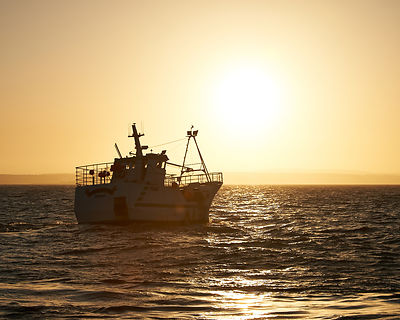 A trawler heads out to sea at sunrise at the scenic yet hard working fishing port of Newlyn in Cornwall.
