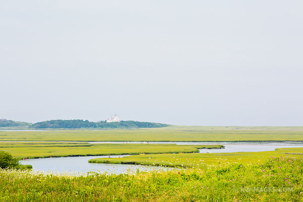 MARSHES FORT HILL TRAIL EASTHAM CAPE  COD MASSACHUSETTS