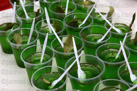 Pots of jelly made from coca leaf extract at trade fair promoting alternative products made from coca leaves , La Paz , Bolivia