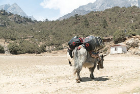 160503-MAMMUT_project360_Everest-0013-Matthias_Taugwalder