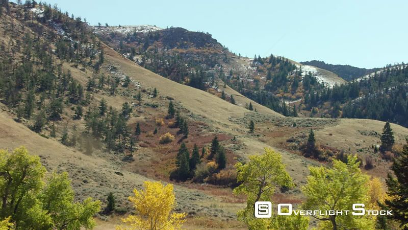 The seasons change in a beautiful valley filled with golden Aspens, Cottonwoods and scrub oak, in western Wyoming