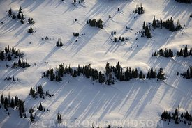 Aerial photograph of fields, trees and snow in Yellowstone National Park