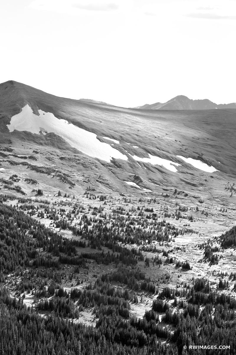 ALPINE FOREST AND HIGH TUNDRA ROCKY MOUNTAIN NATIONAL PARK COLORADO BLACK AND WHITE