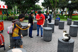 Asian tourist taking photo of cat in Parque Kennedy, Miraflores, Lima, Peru