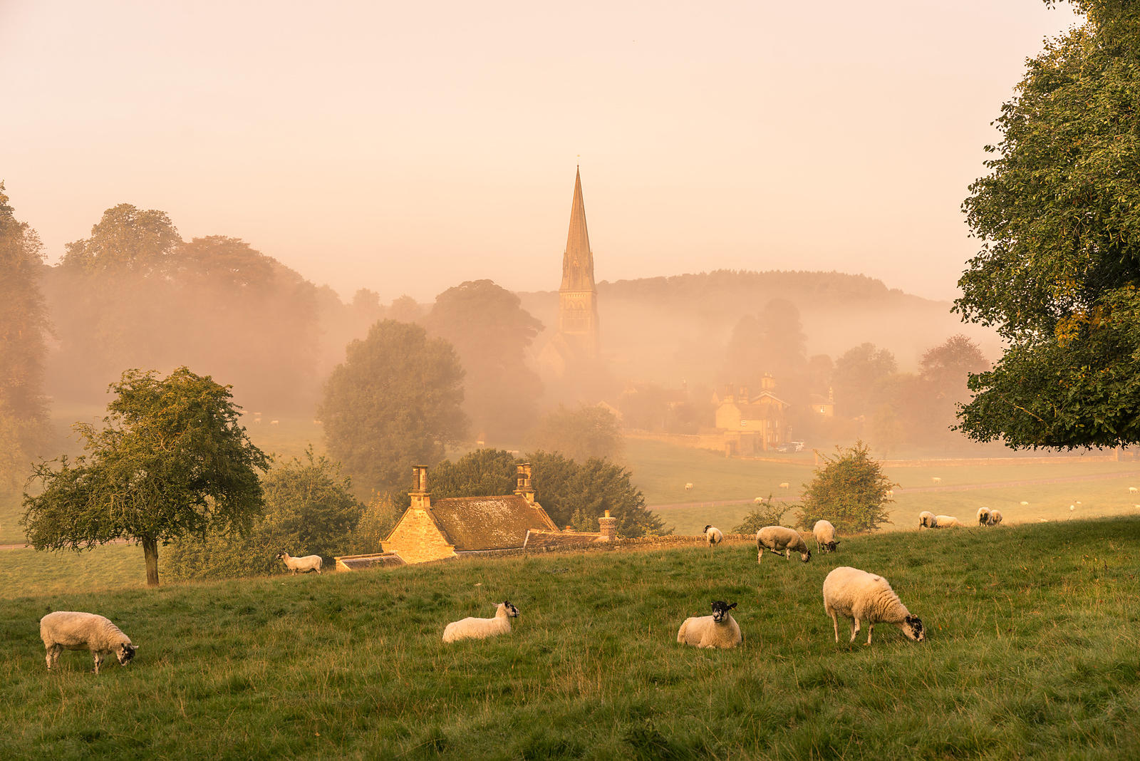 Autumn morning at Edensor