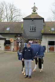 Alan Davies with Valegro
