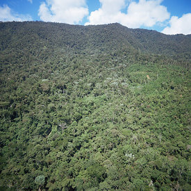 Aerial view of Central Highlands of Papua New Guinea.