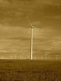 Sepia wind towers