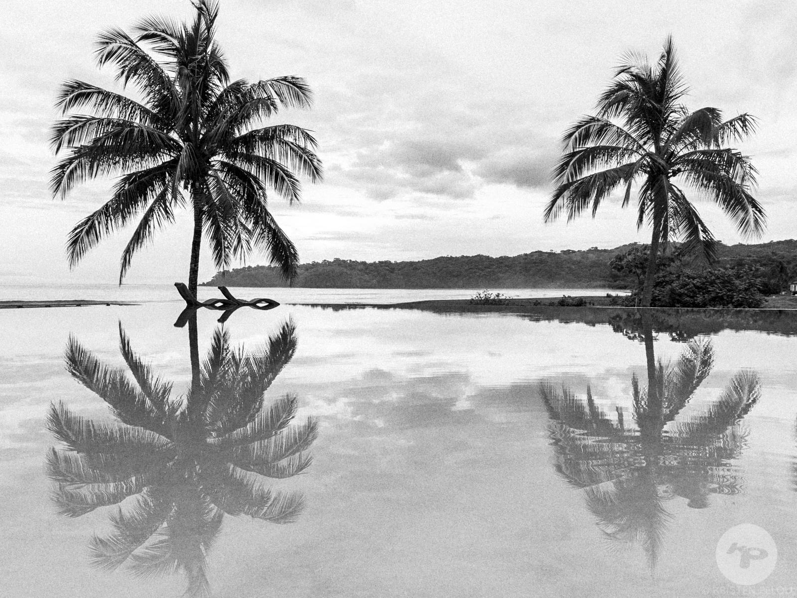 Palm trees and pool by the beach, Panama. Photo : Kristen Pelou