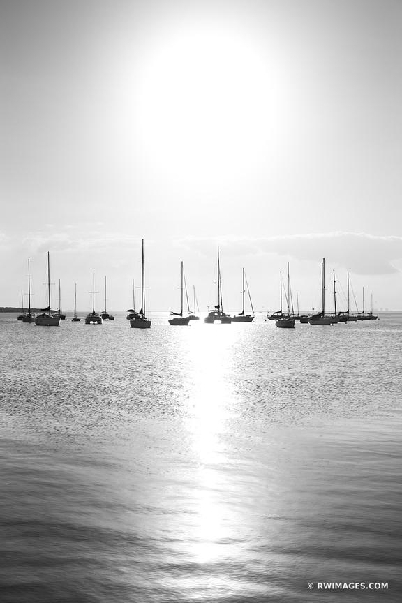 SAILBOATS CRANDON PARK KEY BISCAYNE FLORIDA BLACK AND WHITE