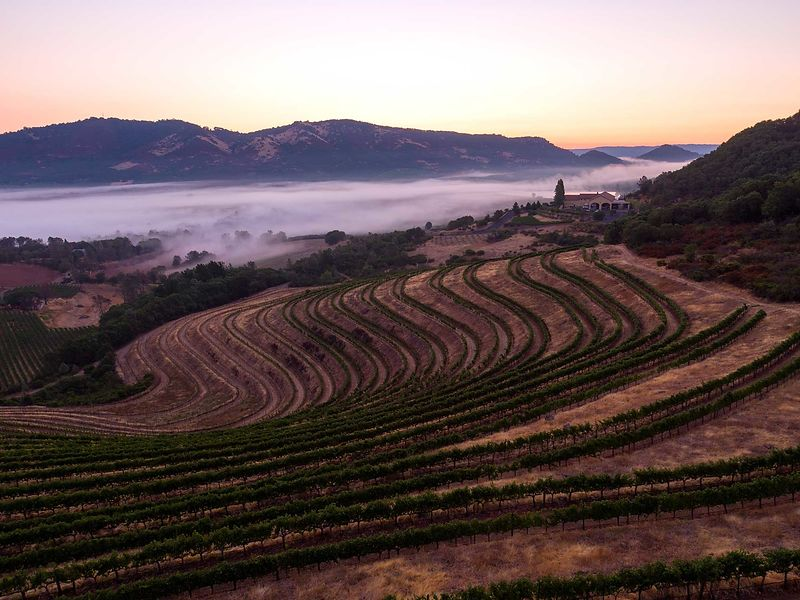 Aerial photography in Napa Valley by Jason Tinacci