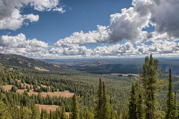 Yellowstone-View-From-Washburn-0288665-HDR