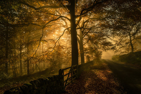 Autumn in the Peak District