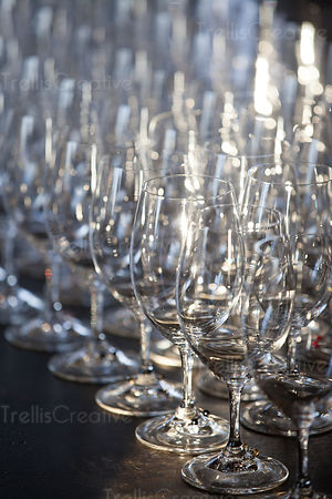 Close-up of wine glass arranged in row