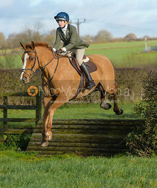 jumping a tiger trap - The Quorn Hunt at Woodpecker Farm