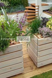Aromatic plant, Chives, Condiment, Container, garden designer, mulch, Stair, Terrace, Window box, Contemporary Terrace, Digital