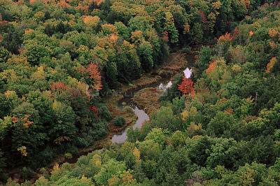 Carp River aerial view with autumn trees, Michigan, USA.