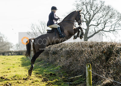 The Belvoir Hunt at Springfield Farm 24/2
