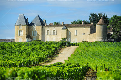 Vineyard and Chateau d'Yquem, Sauternes Region, Aquitaine, France