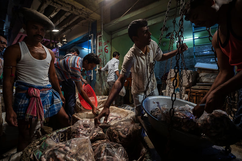 Porters and Fish Sellers at the Howrah Fish Market