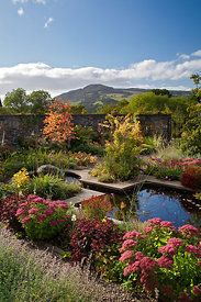 Walled garden featuring mirror pool and autumn colour; view towards Farragon Hill; plants include Euonymus, Cotinus, Cercidip...