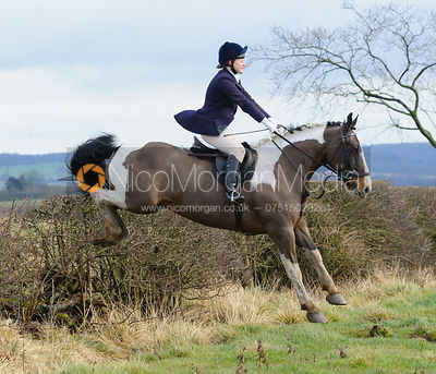 Sophie Brown jumping a hedge above Wilson's covert