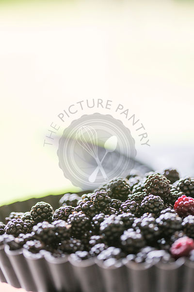 blackberries for home baking a pie or crumble, against sunlight background, sieve just visible.