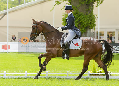 Rebecca Howard and RIDDLE MASTER - Dressage phase, Mitsubishi Motors Badminton Horse Trials 2014
