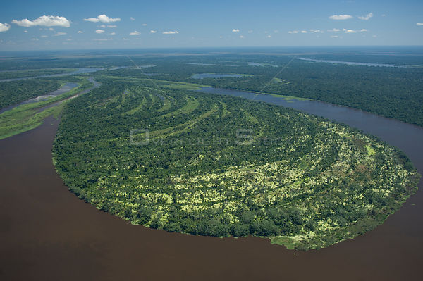 "Aerial view of Amazon ""várzea"" flooded Rainforest of Mamoré River, during the great flood of 2008, at the border of Brazil (R..."