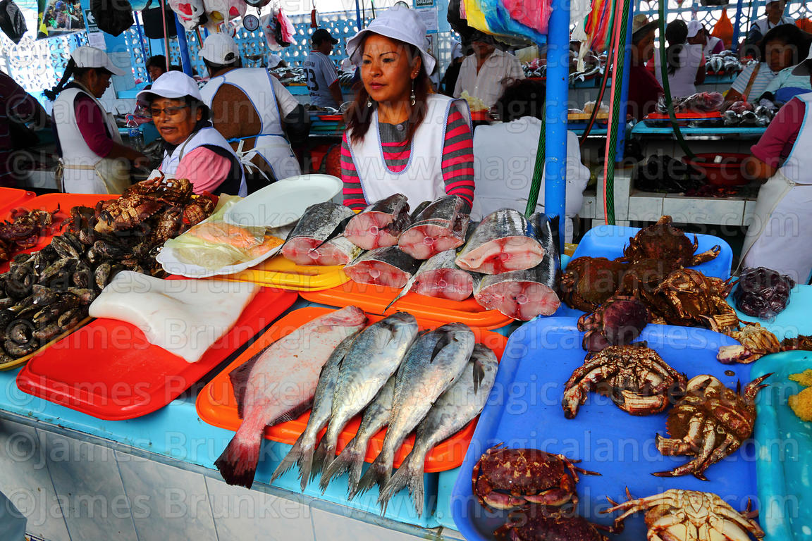 Stall selling freshly caught fish and seafood in fish market, Ilo, Peru