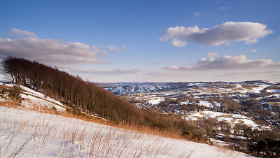 Winter copse above Eyam