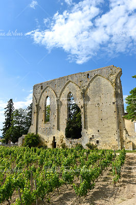 Ruins in Saint-Emilion-Vineyard