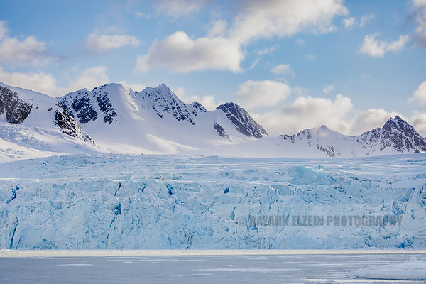 Can you spot the polar bear in front of the glacier?