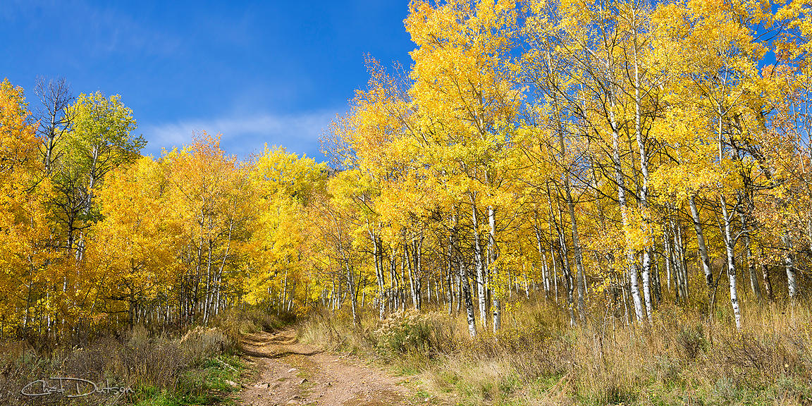 Wasatch Fall