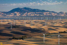 Windmills and Mt. Diablo #5