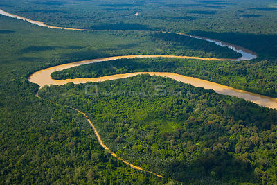Aerial view of river and tributary meandering through lowland rainforest, Rio Sungai Kinabatangan, Sabah, Borneo, Malaysia. 2007