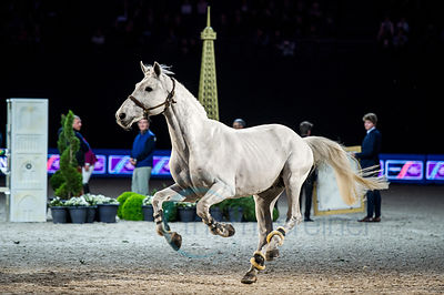 Paris, France, 14.4.2018, Sport, Reitsport, LONGINES FEI World Cup Finals Paris - Longines FEI World Cup Jumping Final II Bil...