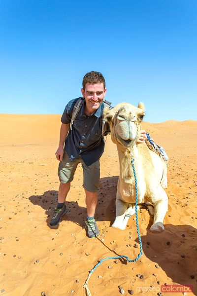 Adult man posing close to a camel in the desert, Oman