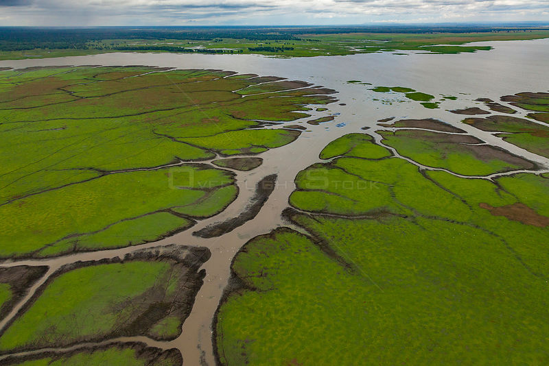 Aerial view of the edge of Lake Urema, Gorongosa National Park, Mozambique. July 2014