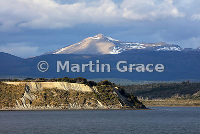 Water-eroded northern cliff bank of the Beagle Channel with Nothofagus woodland and mountains of Tierra del Fuego, Argentina
