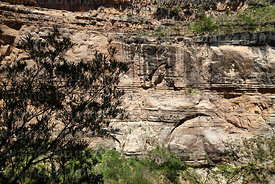 Detail of limestone rock formations in Torotoro Canyon, Torotoro National Park, Bolivia