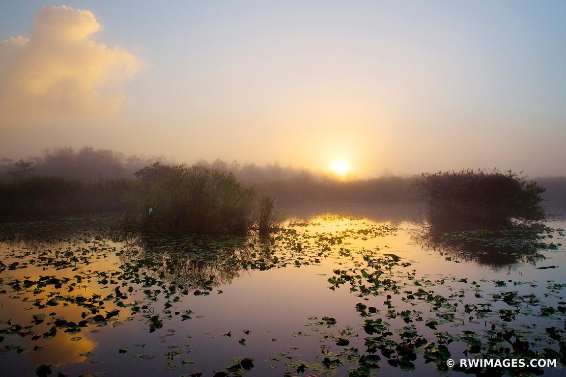 SUNRISE ANHINGA TRAIL EVERGLADES NATIONAL PARK FLORIDA COLOR