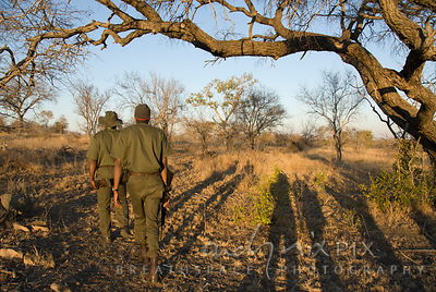 Two game rangers walking away through dry winter bushveld, shadows of tourists on ground