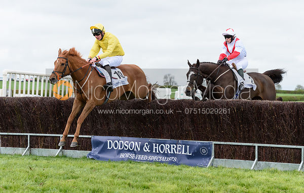 Race 4 - Dodson & Horrell PPORA Club Members Race for Novice Riders