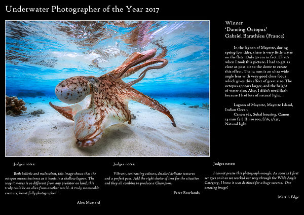 Underwater Photographer of the Year 2017 : Gabriel BARATHIEU