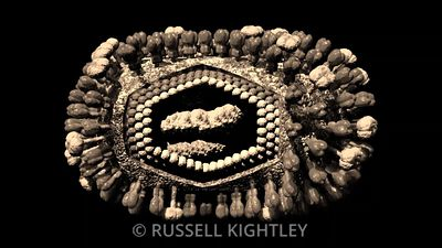 VIRUS-Influenza-3D-cutaway-ANIMATION-FHD_repeat_SEPIA