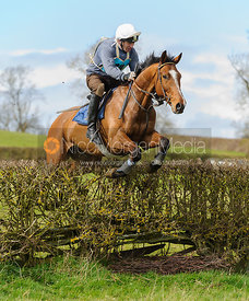 Matt Mackley jumping the last hedge - Harborough Ride 2014