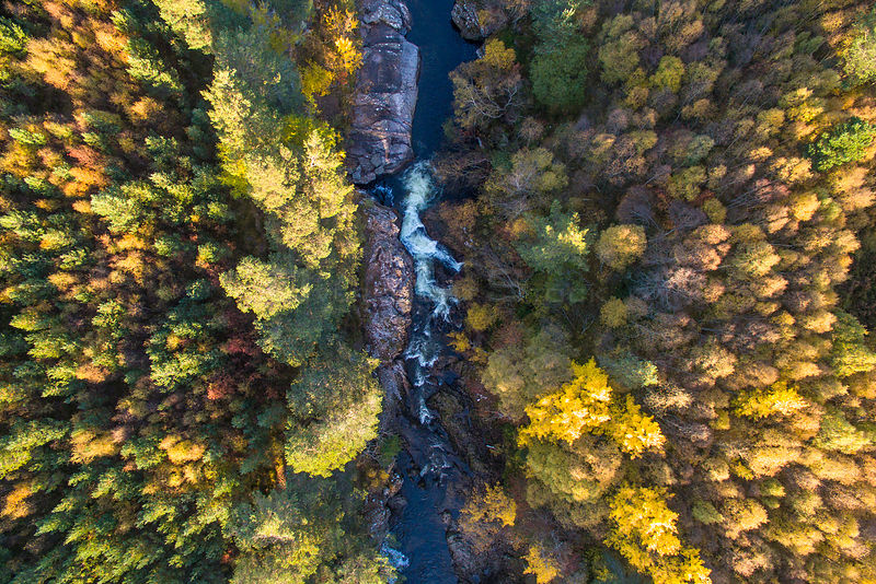 Falls of Truim running through autumnal woodland,  Cairngorms National Park, Scotland, UK, October 2016.